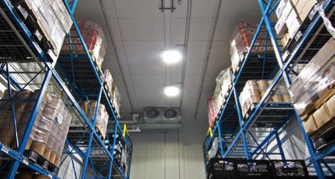 Warehouse Lighting in Michigan